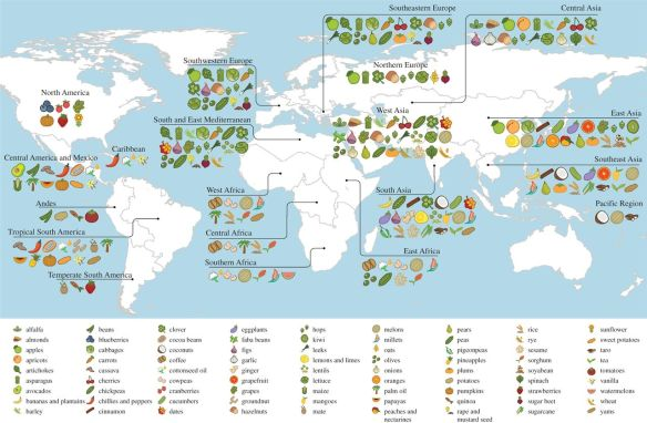 Origins of food crops connect countries worldwide