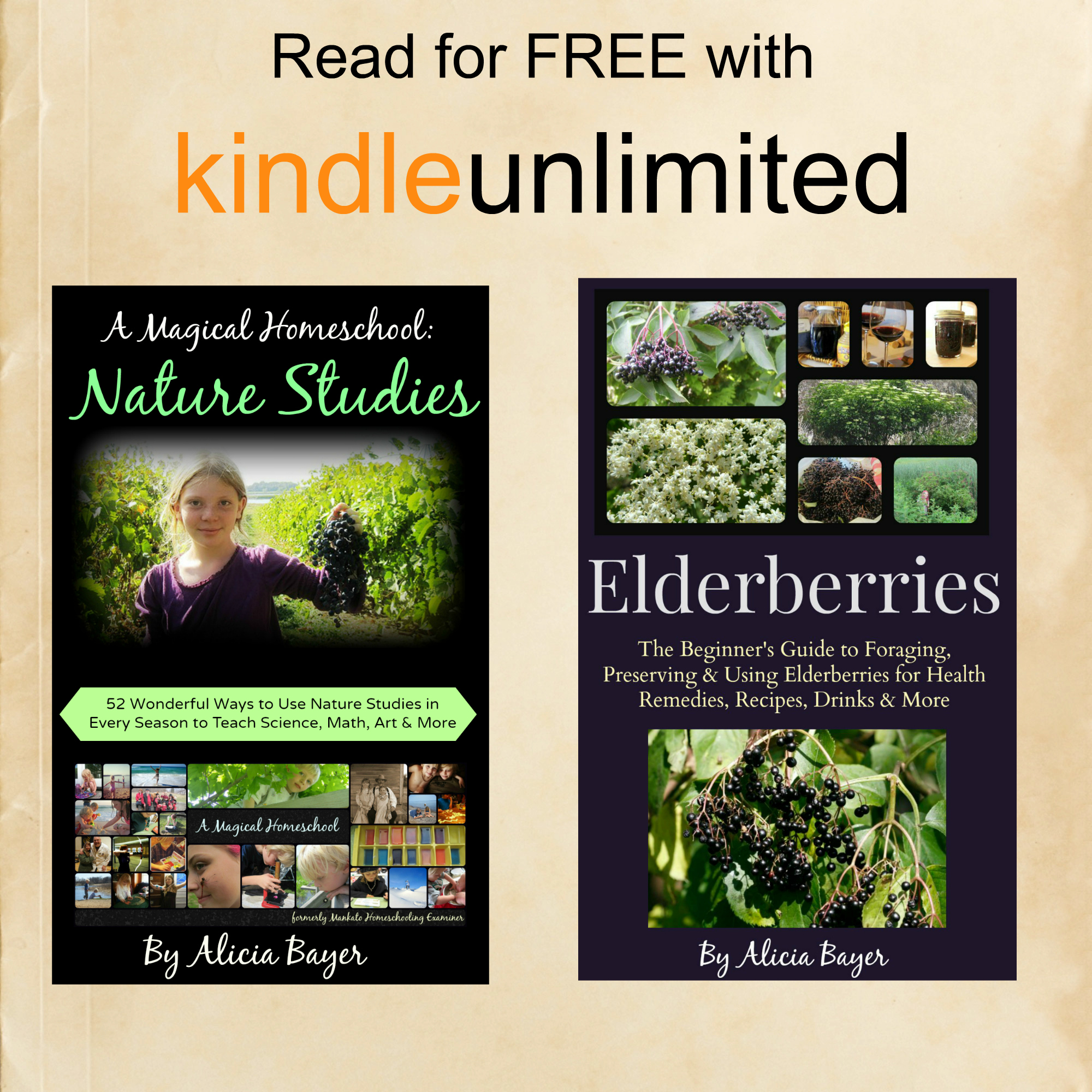 Homeschooling with Kindle Unlimited | Magic and Mayhem
