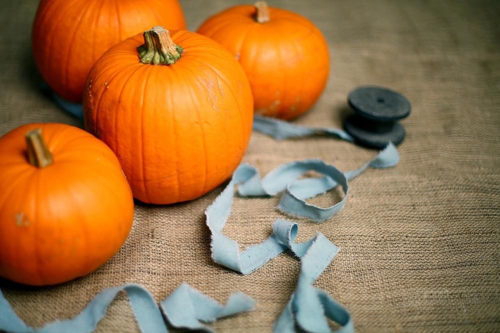 50 educational ways to use pumpkins